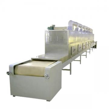 Tunnel Microwave Fast Food Heating Machine with Factory Price for Sale